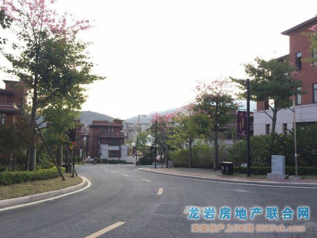 龙岩紫金山玫瑰园别墅6室3厅5卫1#1风新中国图片别墅图片